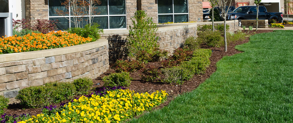 Landscape installation with flowers in front of a commercial building in  West Des Moines, IA.