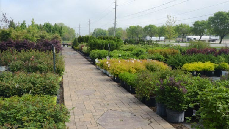 Our garden center in Des Moines, IA.
