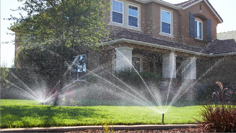 Water Sprinkler Installation