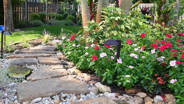 Mature annuals planted beside and stone pathway.
