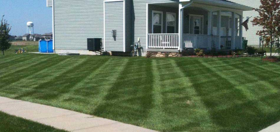 Our newest irrigation client in Des Moines has seen a vast improvement with their lawn.