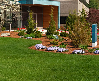Landscaping installation with shrubs, flowers, and mulch in Des Moines, IA.