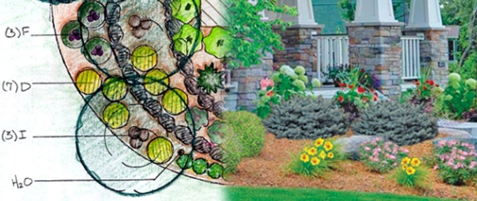 Hand drawn landscape design created by the designer at A+ Lawn & Landscape.
