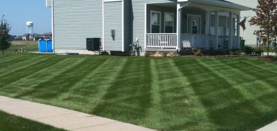 Residential lawn mowing services recently performed in Urbandale, IA.