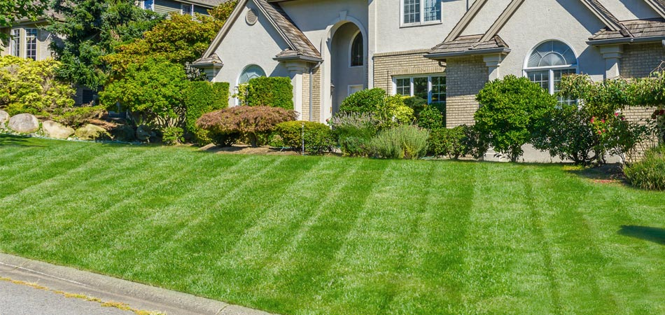 Lawn and landscape at a home in Indianola that has regular lawn care services from A+ Lawn & Landscape.