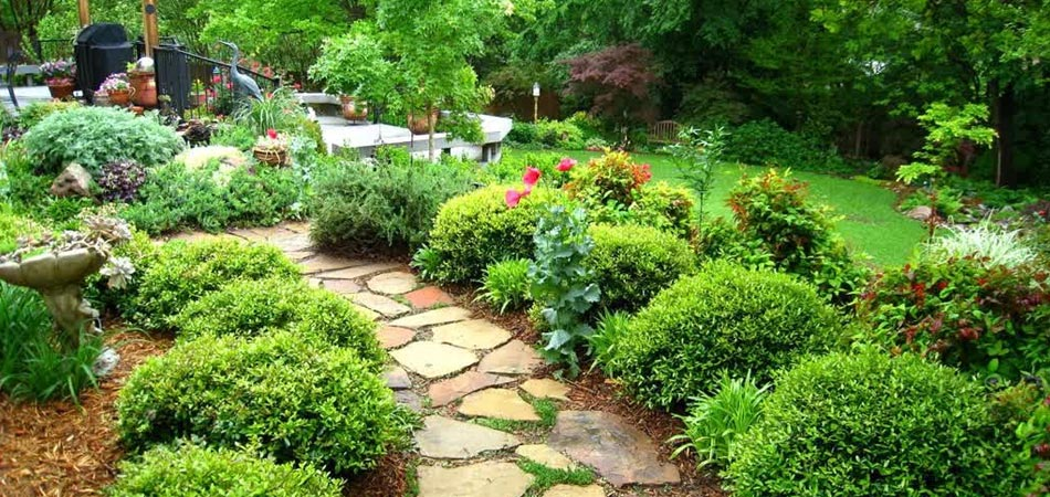Landscaping that has been properly fertilized and maintained with a stone walkway that was constructed in West Des Moines, IA.