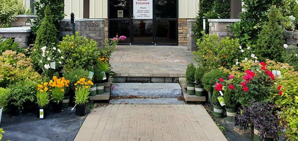 Shrubs and plants for sale at the entrance to our garden center in Des Moines, IA