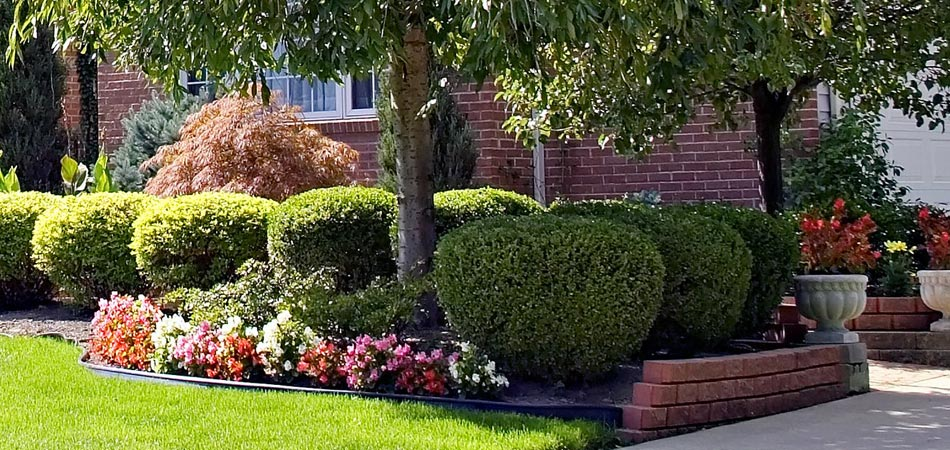 Professionally trimmed and planted landscaping at a home in Grimes, IA.